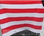 Árpádsávos zászló