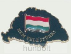 Nagy-Magyarországos zöld lobogós jelvény (39x24 mm)