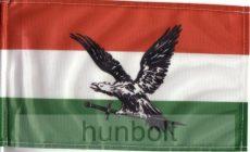 Nemzeti színű fekete turulos zászló