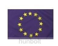 Európa zászló, Uniós zászló
