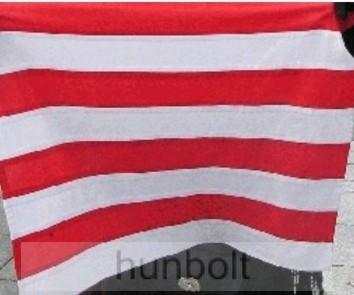 Árpádsávos zászló 15x25 cm, 40 cm-es műanyag rúddal