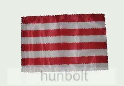 Árpádsávos motoros zászló